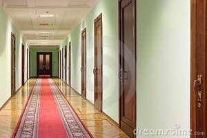 hallway-wit-wood-doors-20570768