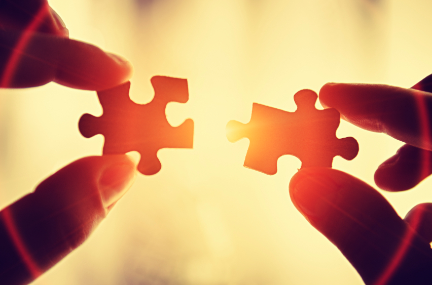Like pieces in a puzzle coming together... Read about Language Management Strategy