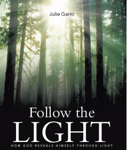 cover follow the light