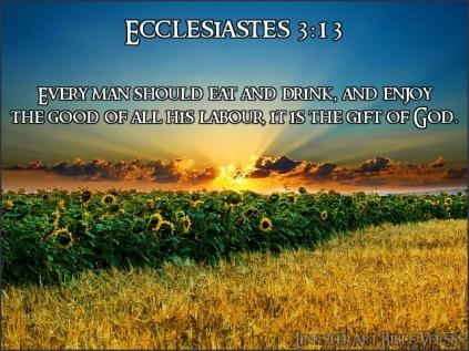 Day 7 FUN Ecclesiastes3v13