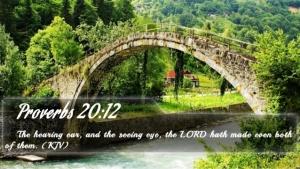 Proverbs 20 12