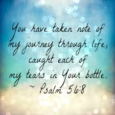 psalm 56 8